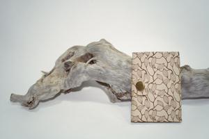Foldslim Ботаника Магнолии / кошелек